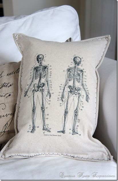 Anatomy Reversible Pillow : Creative Home Expressions
