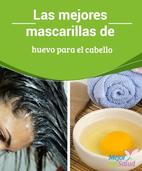 Mejores 52 imagenes de remedios para el cabello en pinterest for La mejor receta casera para hidratar el pelo seco