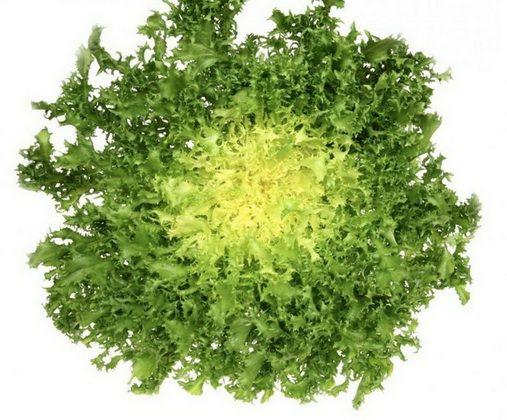 10 powodów aby jeść sałatę