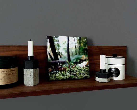 einzeln: Leinwanddruck mit Waldmotiv / Makro Fotografie Wald