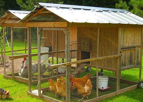 kippenhok maken met kippenren