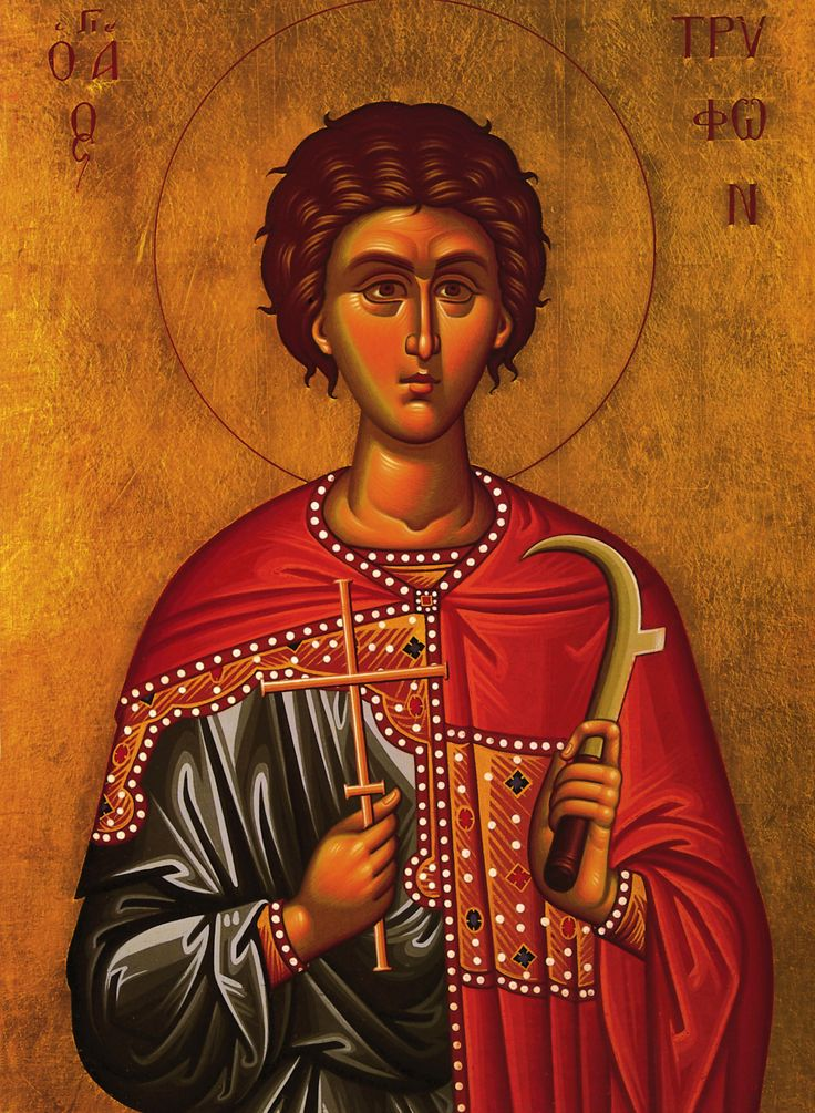 Ο Αγιος Τρυφων .St Tryfon. 01 Feb