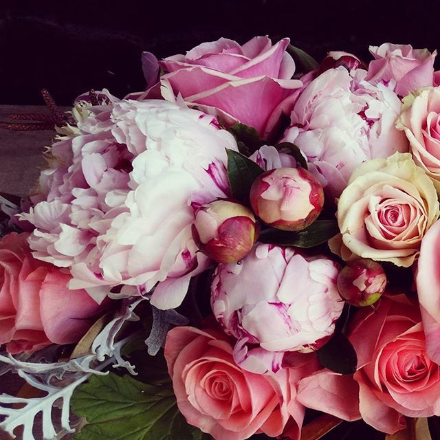 #love #life #nature #colour #haciendaflowers #ascot #brisbane #australia #fleurs #perfume #prettypinks #peony #roses