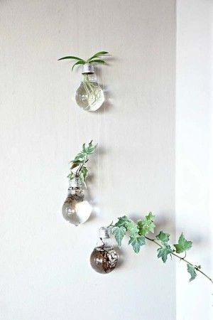 indoor-garden-projects-15