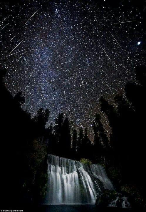 Norcal Metor shower, it pays to be away from the city lights... God I want to see this so bad just once in my life
