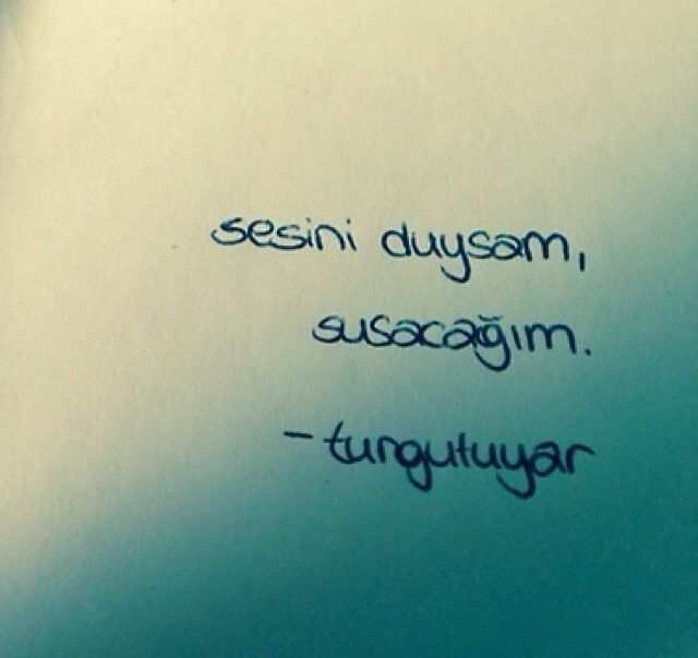 Sesini duysam, susacağım. - Turgut Uyar