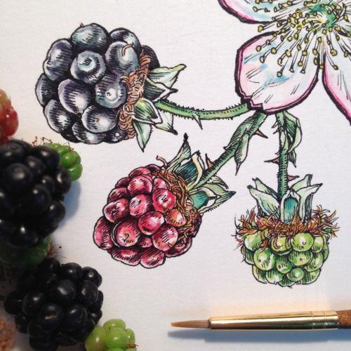 В ожидании весны вместе с Noel Badges Pugh: чудесные иллюстрации цветов - Ярмарка Мастеров - ручная работа, handmade
