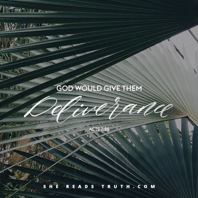 The Life of Moses reading plan from She Reads Truth | SheReadsTruth.com