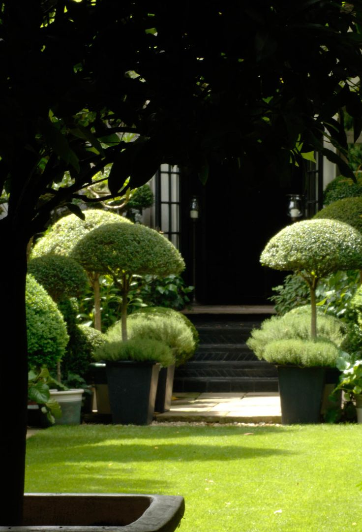520 best images about formal gardens and topiary on pinterest