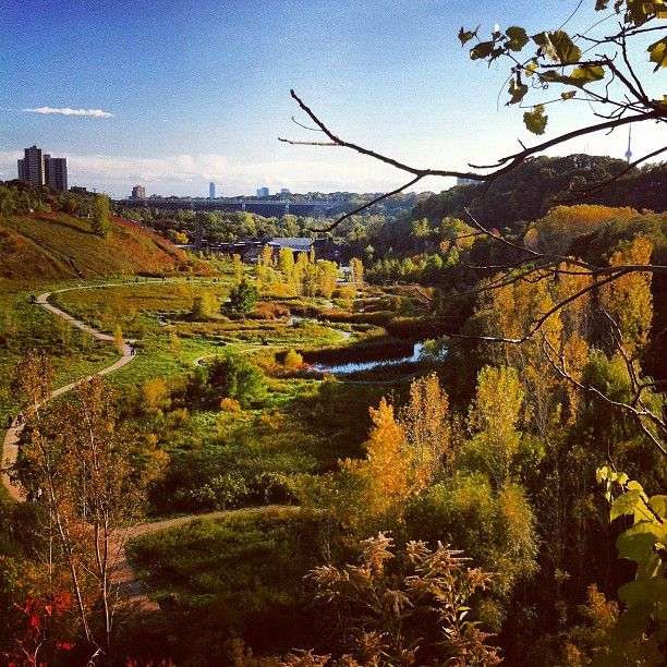 Don Valley Offroad Bike Trails in Toronto, CA. This place is popular with Students, Outdoorsmen, Jet Setters, LGBT, Pet Lovers
