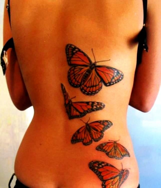 This is the inspiration for the six monarchs I want on my back. I want them all done in different positions, just like this one <3