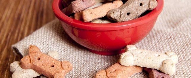 Healthy Treats - Peanut Butter Dog Biscuits & Pumpkin Dog Treats