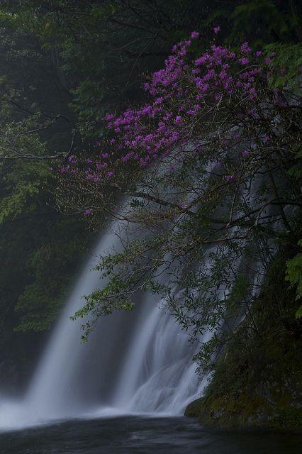 筆薮の滝 - Fudeyabu Falls, Wakayama