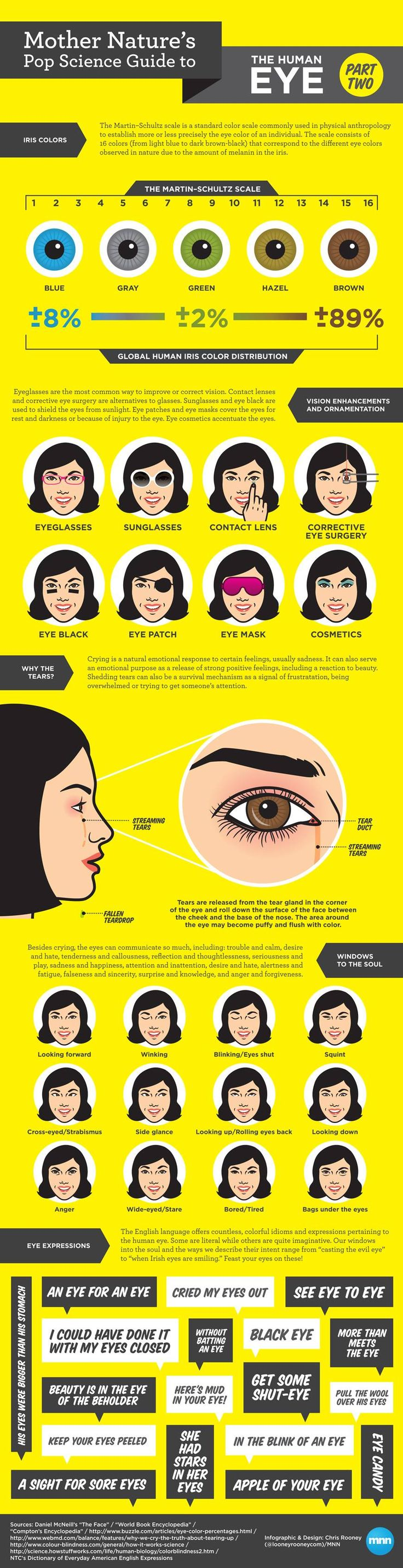 17 best work images on pinterest eye facts eye glasses and mother natures pop science guide to the human eye part 2 infographic nvjuhfo Gallery