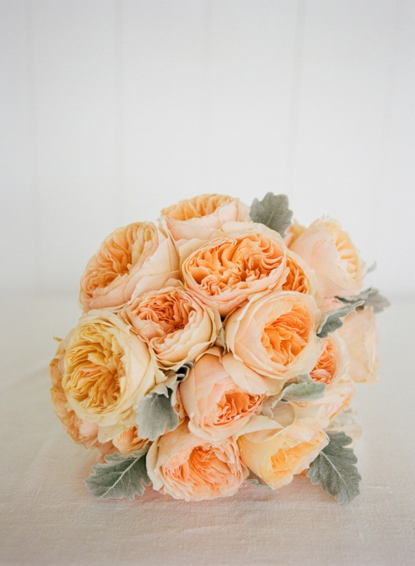 Peach Garden Rose coral garden rose bouquet. fresh peach garden roses david austin