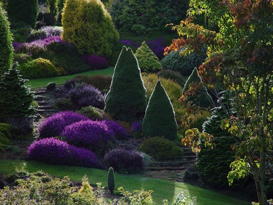 Can I go here....New Zealand garden