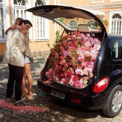 pretty proposal