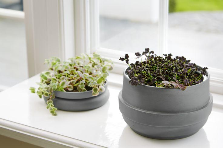 Hinken pots • Designed by Silje Nesdal & Ann Kristin Einarsen #flowerpots #flowers #pots #spring #accessories #ceramic #norwegian #design #WOUDdesign