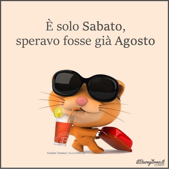 E solo Sabato - 13130