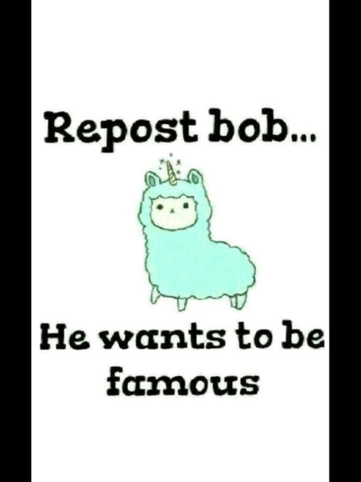 Bob wants to be famous so repost him:) LETS SEE HOW MANY REPOSTS THIS CAN GET!