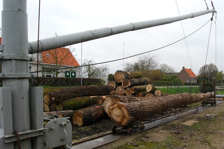 Mast voor het optakelen van de bomen.