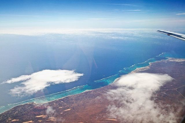 Nice view heading back from fieldwork today. Cruising along #NingalooReef ✈️which stretches almost 300km along the Western Australian coastline #westernaustralia #wauncovered #discoverwa