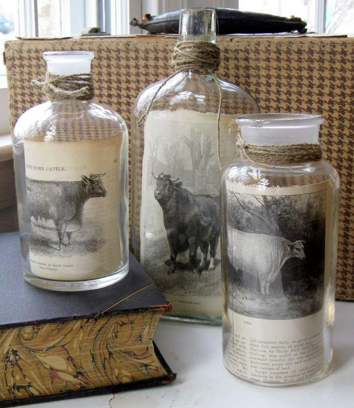"Pictures ""framed"" inside jars from Mitzi's Miscellany blog"