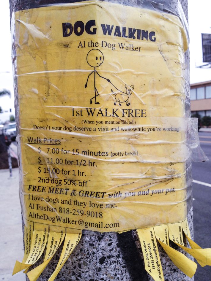 It turns out people are getting rich in Hollywood walking dogs on their potty break. CRAZY!!  #losangeles #california