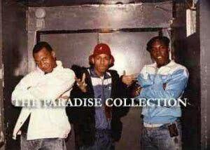KRS-1, MC Shan & DJ Scott LA Rock(RIP)