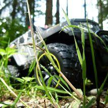 Ein SWAT im hohen Gras.