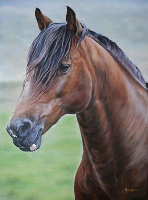 Cavalo Crioulo GUAPO, a partir de uma foto de JG MARTINI https://www.facebook.com/ArtistaElianaBonini/photos/a.117702685045643.23527.117506335065278/117702751712303/?type=1