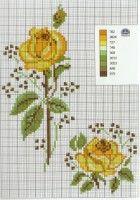 Gallery.ru / Фото #115 - розы разные - irisha-ira