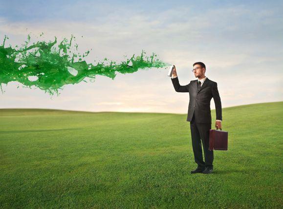 Environmental Management Systems and Greenwashing