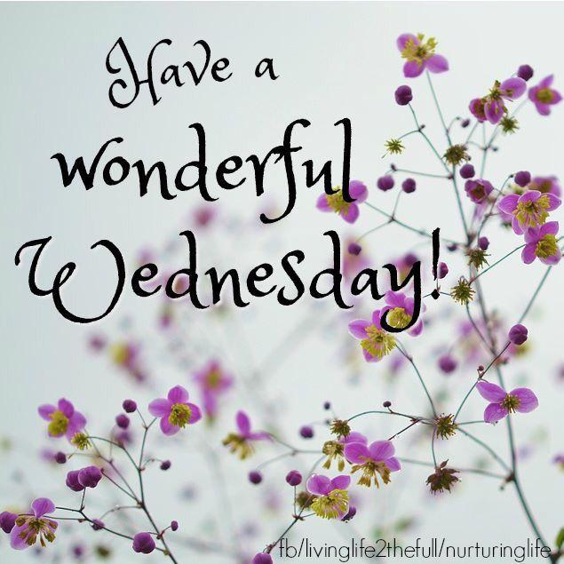 Image result for wonderful wednesday pinterest uk images