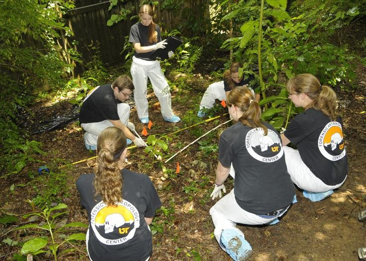 These 6 'Body Farms' Help Forensic Anthropologists Learn To Solve Crimes