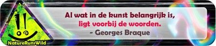 Al wat in de kunst belangrijk is, ligt voorbij de woorden. - Georges Braque #citaat