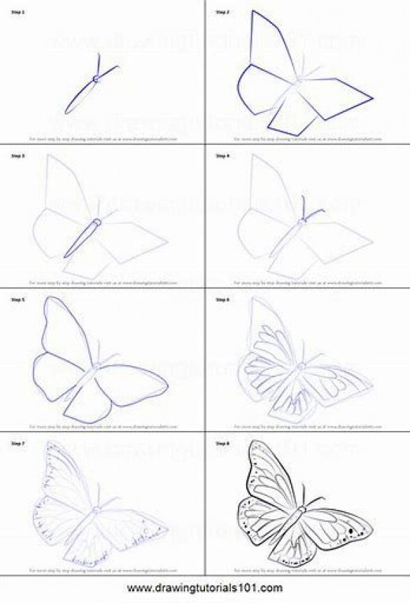 Image Result For How To Draw Step By Step Pencildrawing Pencil