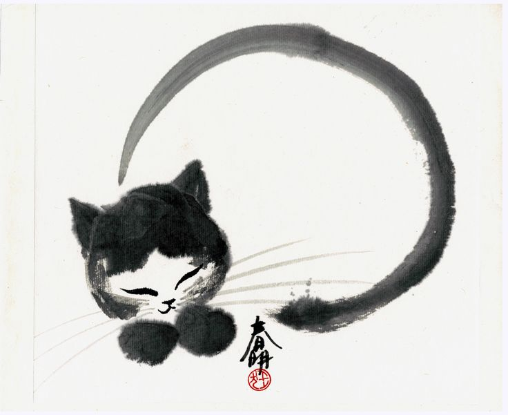 Cat and japanese calligraphy such a beautiful playful