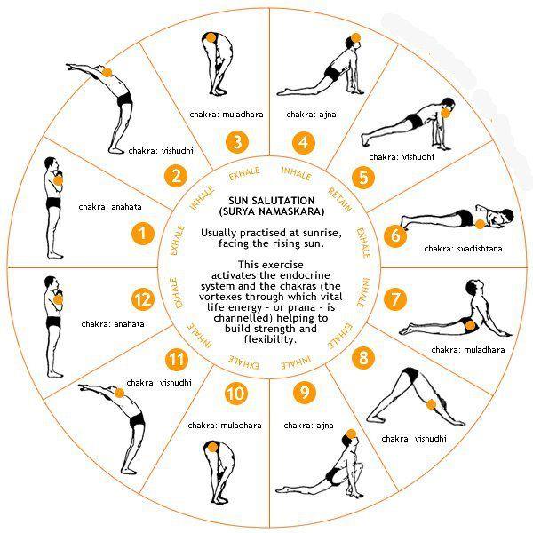 Yoga y naturaleza: Surya Namaskar (Saludo al sol).y chakras                                                                                                                                                     Más