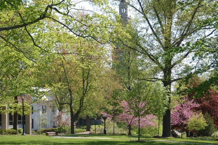 Granville is also home to Denison University, which is a gorgeous private college you'll want to check out while you're in town.