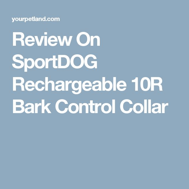 Review On SportDOG Rechargeable 10R Bark Control Collar