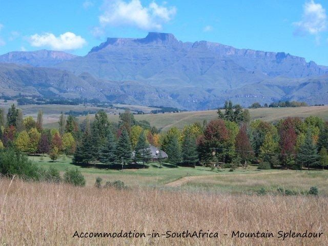 A little piece of paradise at Mountain Splendour Eco-Resort. http://www.accommodation-in-southafrica.co.za/KwaZuluNatal/CentralDrakensberg/MountainSplendour.aspx