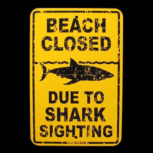 SHARK SIGHTING BEACH CLOSED danger sign surfer decor   eBay
