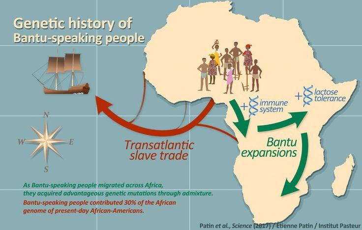 Joana B. Pereira, Verónica Fernandes e Luísa Pereira integram a equipa internacional que reconstruiu a história genética das populações agrícolas africanas falantes Bantu. (Foto: DR)