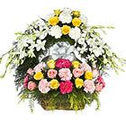 Flowers are really the most attractive, fascinating and most liked gift which can be given without any reason. Flower delivery in Kolkata usually provides their customers with wide varieties of attractive and beautiful flowers that can be used for any occasion.