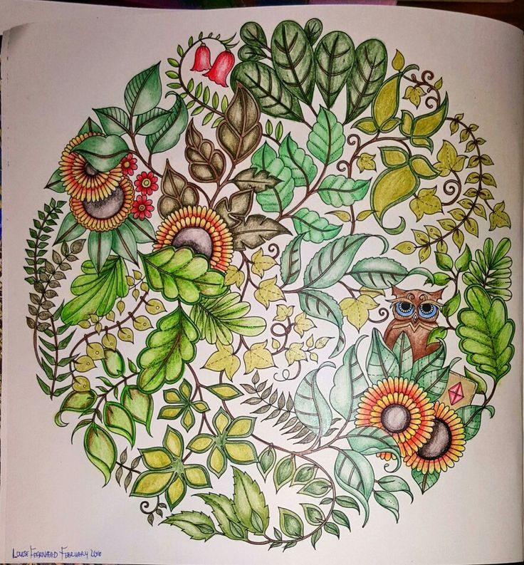 Coloured by Louise Anche Fearnhead