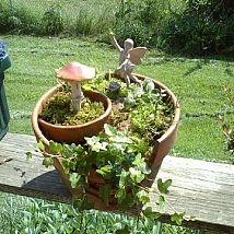 The Perfect Fairy Pot!