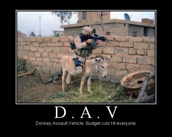 9fdc19ba2b9eae661a61165eb63eb267 funny pictures of animals funny army pictures 32 best military humor images on pinterest funny military,Funny Airplane Memes Budget Cuts