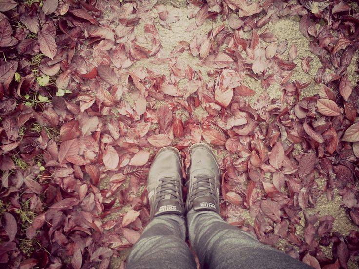 itt van az ősz itt van újra...