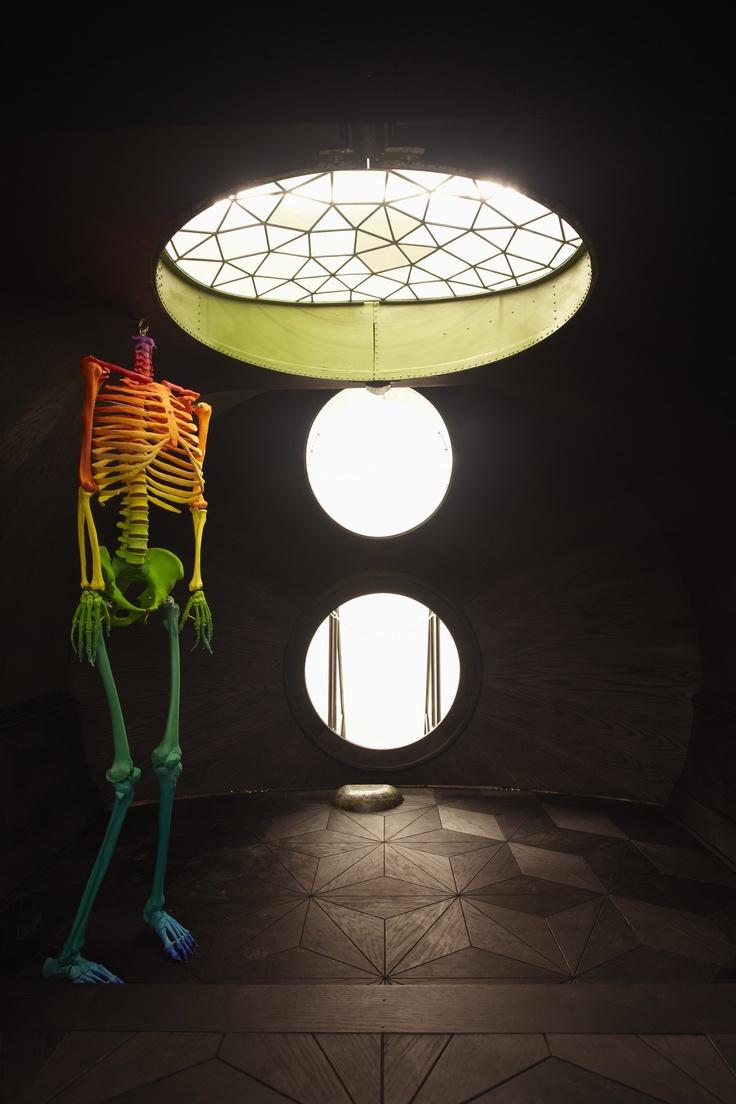 1000 Images About Skulls Amp Bones On Pinterest